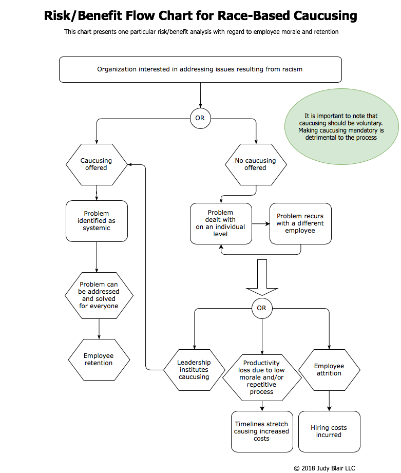 Flow chart image showing a risk/benefit analysis of race-based caucusing. For a PDF of this image, please contact judy@judy-blair.com
